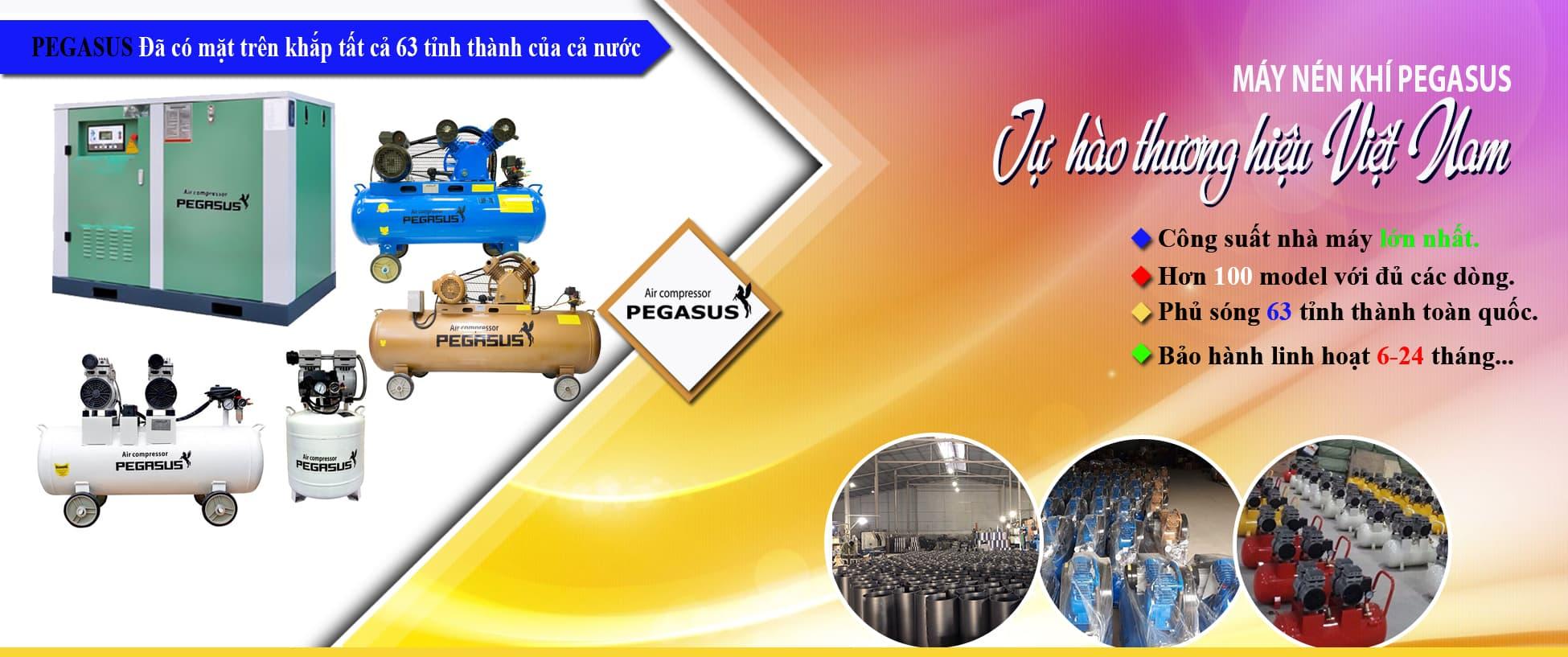 Banner pegassus